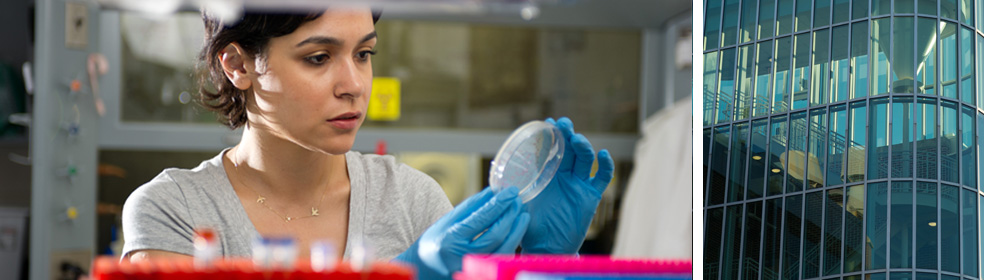 Female student wearing gloves in lab inspects petri dish contents.
