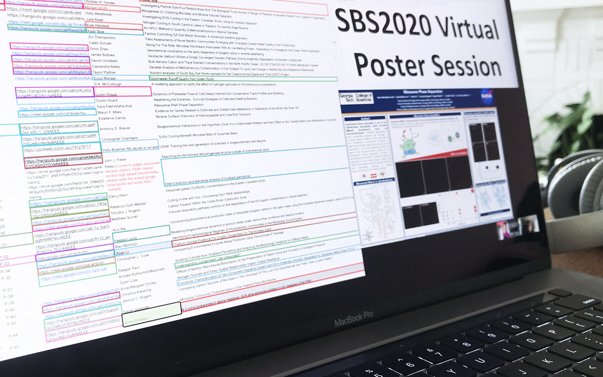 Virtual Poster Session on monitor.