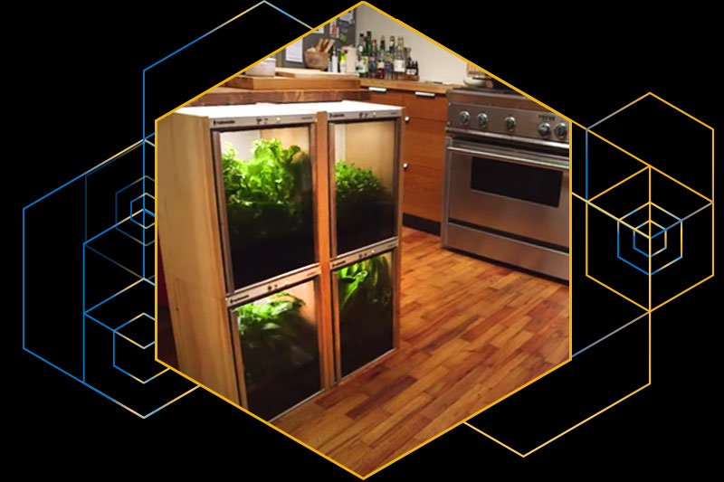 The Nanofarm in a kitchen